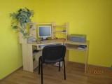Stěhování_knihovny_2011_(7)
